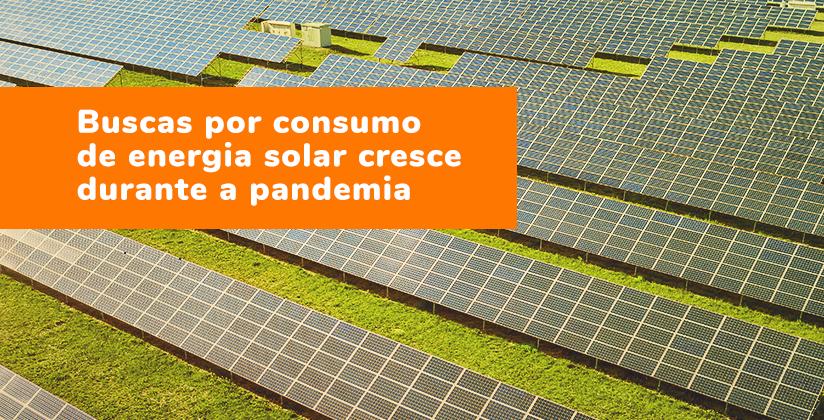 Busca por consumo de energia solar cresce durante a pandemia